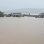 Hướng dẫn tổ chức dạy học khi học sinh đi học trở lại sau mưa lũ của Sở GD&ĐT